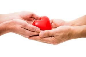 Faire un don (2)